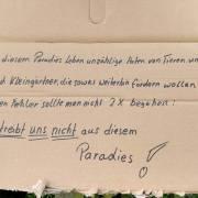 005-paradies